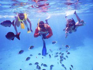 roatan-underwater-snorkel